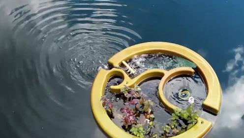 外国一款神器的装置放在水里,脏水立刻变成清水,强到无法想象