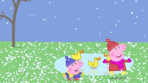 小猪佩奇很喜欢喝水果茶 所以她要自己做水果茶 玩具故事