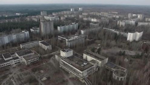 """核泄漏事故后,这里被人类抛弃成为""""死城"""",如今却是动物的天堂"""