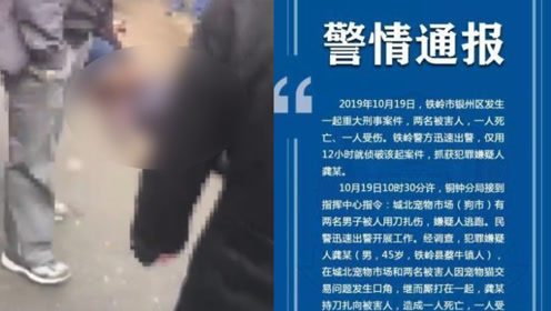 辽宁一男子因宠物猫交易问题持刀伤人,致1死1伤被刑拘