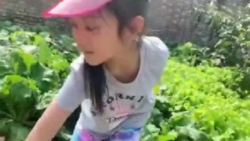 李小璐带女儿体验干农活 甜馨拔萝卜忙得不亦乐乎
