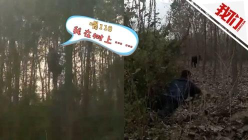 """来自树上的报警电话:""""牛魔王""""疯狂冲向新主人 男子无奈爬上树被困3小时"""