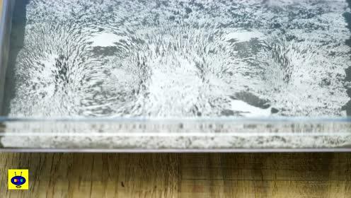 一张白纸,就能让隐身的磁感线现原形,咋办到的?