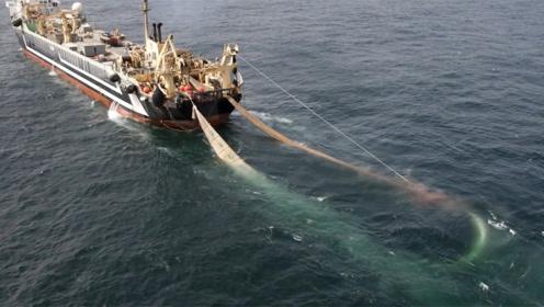 世界上最大的渔船,造价高达4亿元,捕鱼过程相当壮观!