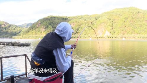 这鱼可越钓越有意思了,但凡你提竿稍晚一点,竿子都立不起来!