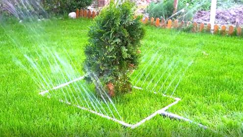 还在每天早起给花草浇水吗 有了这个真的很方便