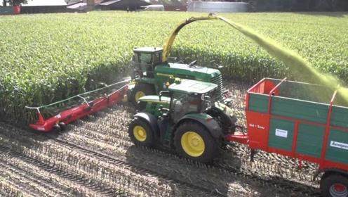 实拍大型玉米青贮收割机作业全过程,这工作效率可以减少劳动力!