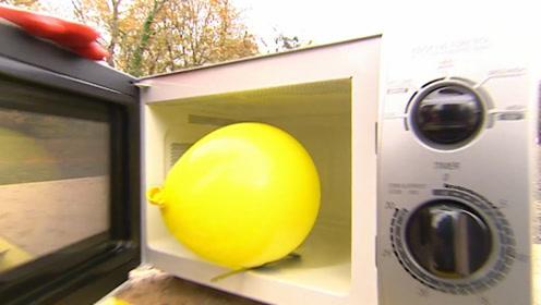 一个气球的威力有多大?将它放入微波炉加热,看得我手机都没拿稳
