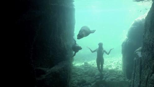 海洋深处近距离感受海洋生物,在拉巴斯与海狮共泳