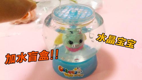 试玩水晶宝宝加水惊喜盲盒,拆开只有水精灵,加水之后真的很惊喜