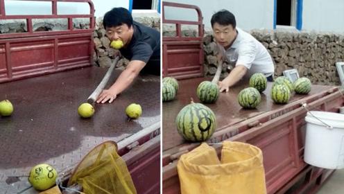 爆笑!男子把蔬菜水果当台球打走红,号称自家有菜园子,西瓜砸碎也不心疼