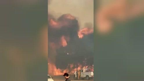 美国加州大火烧到好莱坞!烧毁34英亩山地