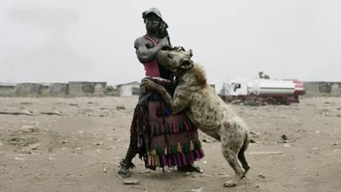 鬣狗为什么怕非洲人?看完满满的心酸,镜头记录全过程!