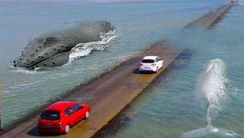 世界上最危险的海上公路:全程只有4公里,一路飙车才可以逃生