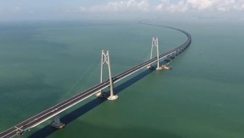 港珠澳大桥通车90天,收了多少过路费?网友:价格这么亲民吗