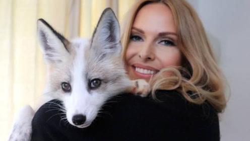 """难怪被人叫作""""狐狸精"""",听听小狐狸的叫声,这嗲劲儿你能忍?"""