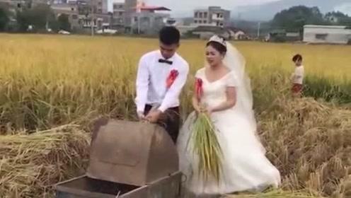 新娘大喜之日被迫割稻谷,这一幕要是被娘家人看到了,你们猜会怎么样?