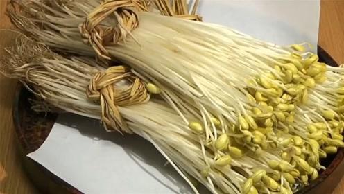 """日本农民种植的""""天价""""豆芽,一斤卖到了140元,差距咋这么大"""