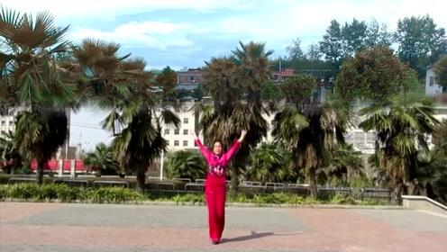广场舞《三生三世十里桃花》轻快优美抒情,好听好看