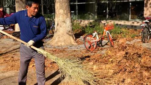"""最乐观""""扫地僧""""每天扫4吨落叶:就当锻炼身体了,还能赚钱"""