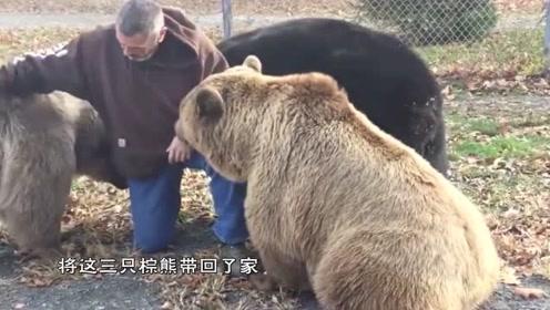 大叔勇救了三只棕熊,再相见已白发苍苍,棕熊的反应让人感动!