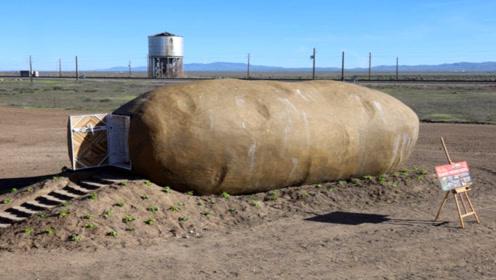 奇葩的酒店,外形酷似一个大土豆,住一晚200美元,你想去吗?