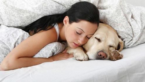 女子和狗狗同吃同睡,半年后突然肚子胀痛,检查后医生傻眼了!