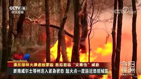 """澳东部林火肆虐毁家园 悉尼面临""""灾难性""""威胁"""