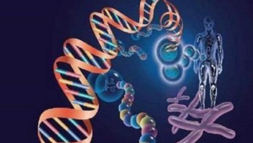 人类科技再发达,也造不出一个细胞,生命真的是神创造的吗?