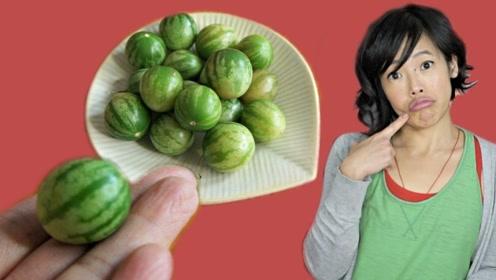外表像西瓜吃起来像西红柿,这是种什么水果?网友:基因突变了吗