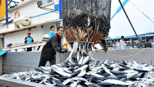 世界上最大的渔船,造价4亿元,一网下去能捕3吨鱼
