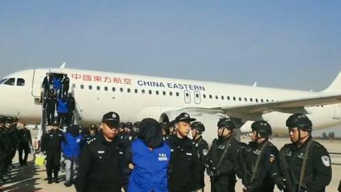 """河北警方首次跨境押解208名""""杀猪盘""""嫌犯回国 涉案金额上亿元"""