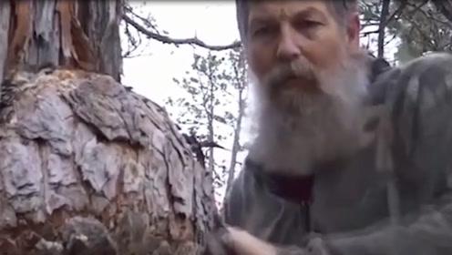 """古树上长个""""大疙瘩"""",锯下来带回家盘它,盘完瞬间被惊艳!"""
