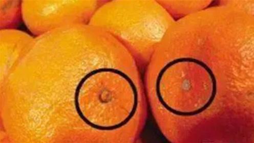 """牢记橘子上有个""""小机关"""",甜不甜立马知道,方法真棒"""
