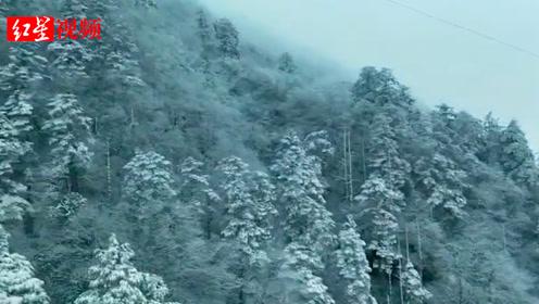 不是头皮雪!峨眉山迎2019入冬首场积雪,10厘米那么厚