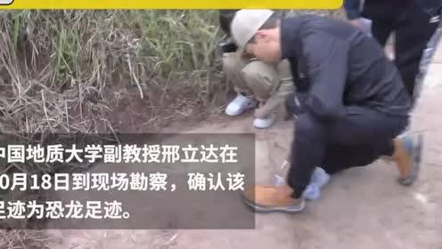 村民搞自媒体发现四川巨大恐龙足迹:一直以为是野鸡脚印