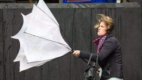"""为什么日本人打死都不用折叠伞?原来背后隐藏""""秘密""""!"""