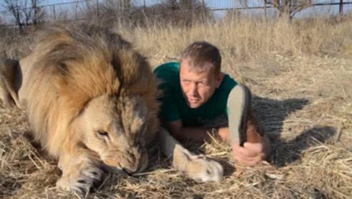 饲养员给儿子服气,狮子很不无敌,训雄狮就跟训狮子一样!fc蝙蝠侠2如何训话6图片