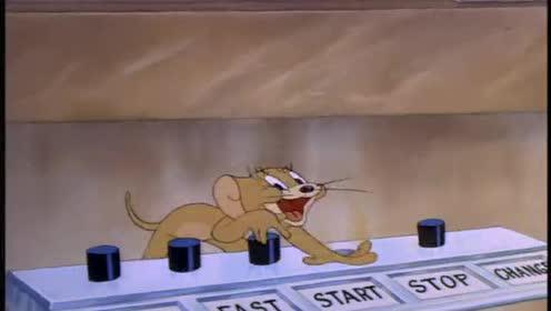 猫和老鼠:杰瑞让汤姆在猫女孩面前出丑了!