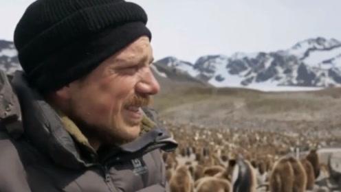 全球变暖带来的危害,摄影师在南极都哭了,直言这里很热!