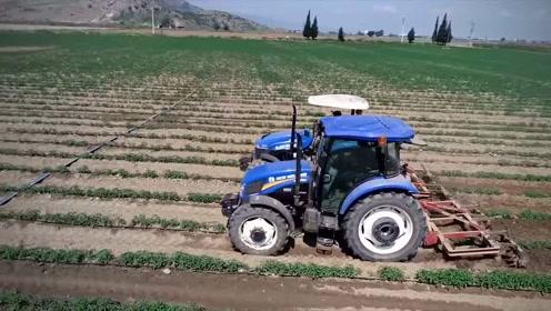 农村牛人将拖拉机这样改造后,松土效率非常高,这样改装真服气