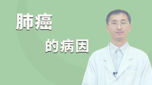 """有因必有果,肺癌的病因就是""""我"""""""