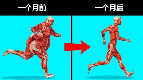 科普一下:长期不吃饭,你的身体会发生什么?