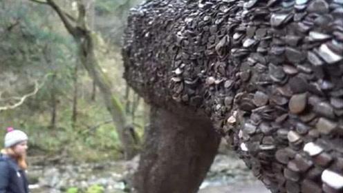 """世界上唯一一颗""""摇钱树"""",树干上全是硬币,却没人敢拿走一枚!"""