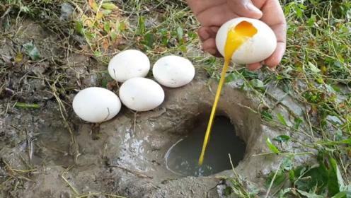 泰国小伙用生鸡蛋捕鱼,鱼一个接一个跳出来,场面一度失控!