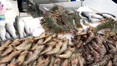 迪拜菜市场:蔬菜比龙虾还昂贵,贫民只能吃海鲜维持生活