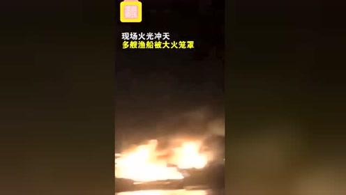 突发!广东阳江一码头起火 多艘渔船被大火笼罩