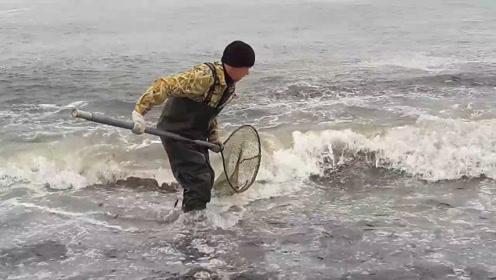 密密麻麻的鱼即将被海水冲上岸,拿个抄网随便捞点!