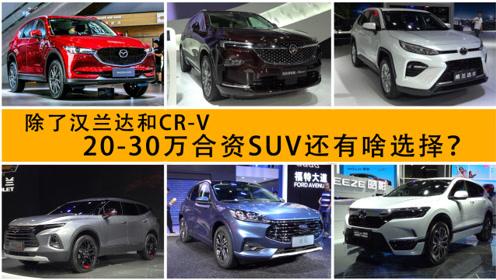 大家都喜欢聊汉兰达和CR-V 20-30万合资SUV就没别的选择了?