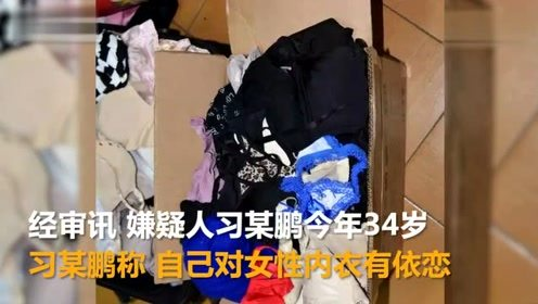 """""""内衣大盗""""被刑拘 4年内盗窃400余件女性内衣裤"""